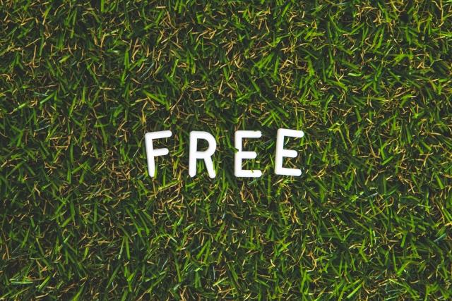 [迷信] freeにNULLを渡すとクラッシュする